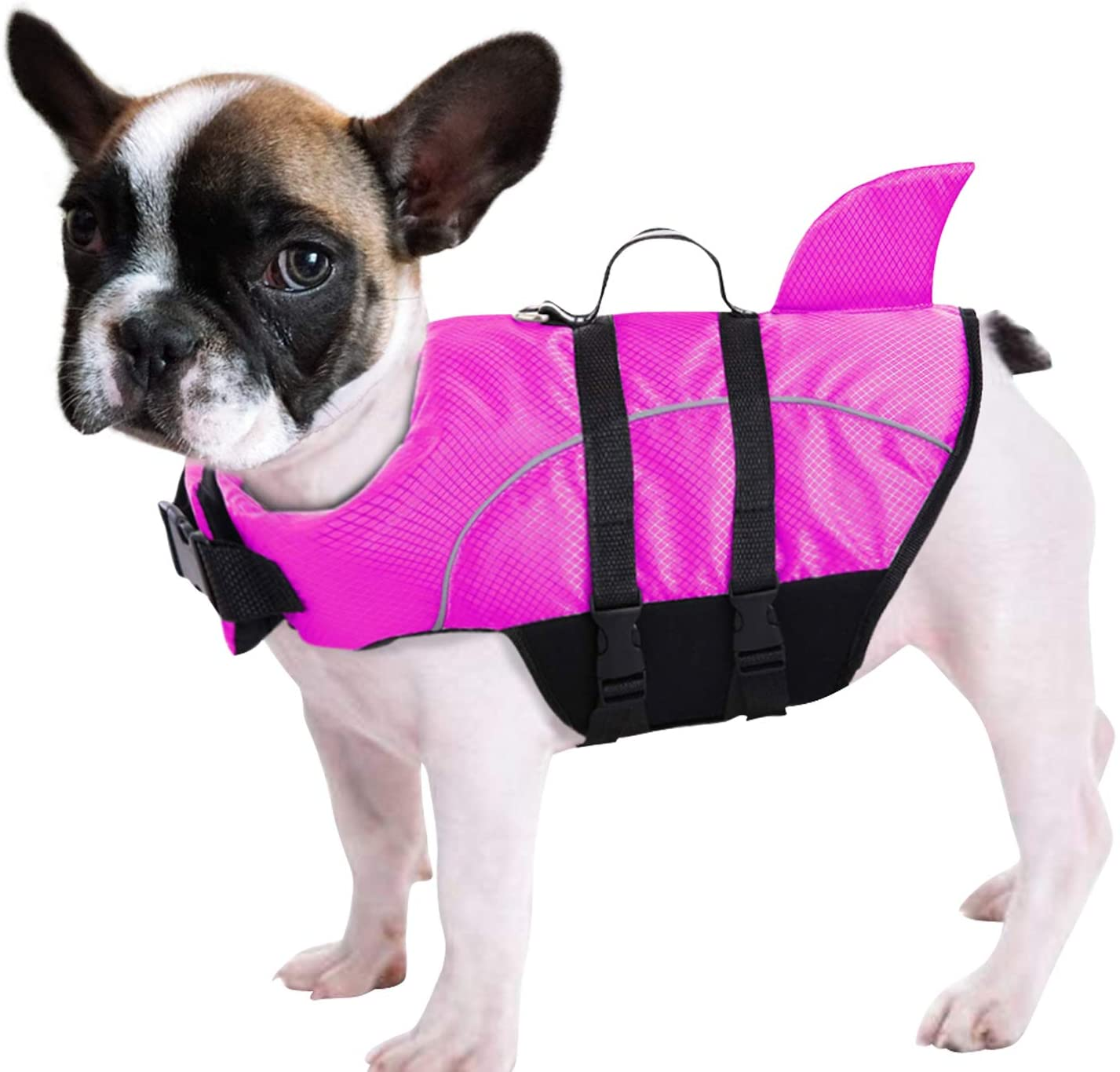 Queenmore Dog safety Jacket